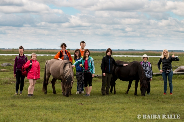Ciemos pie Engures ezera dabas parka savvaļas zirgiem