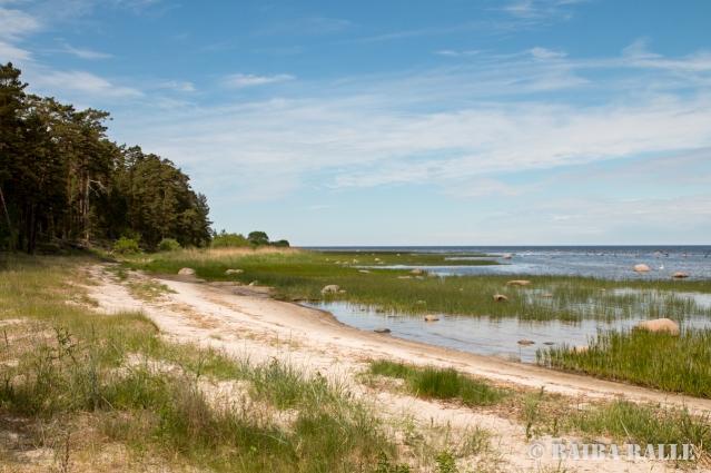 Rīgas jūras līcis pie Mērsraga